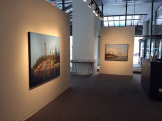 INTERIORS: Studies of Woodland and Forest, installation view