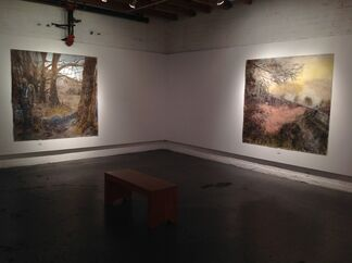 David Bailin: Dreams & Disasters, installation view