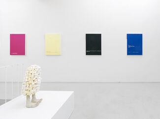 Murray Gaylard - WTF Venus?, installation view
