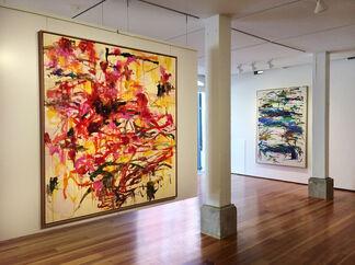 Kikuo Saito, installation view