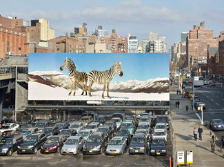 Paola Pivi: High Line Art, curated by Cécilia Alemani, High Line New York, installation view