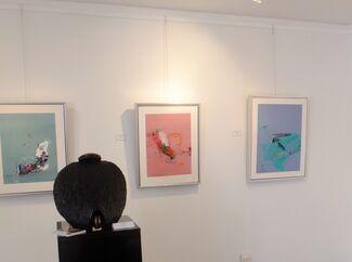 Athos Zacharias: Taking Chances, installation view