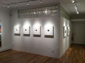 ARGENTINEAN AFFAIR, installation view