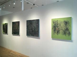 Changing Patterns, installation view