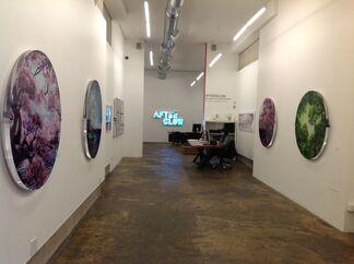 Afterglow, New Work by Jessica Lichtenstein, installation view