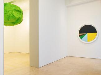 Tom Friedman- Gravity, installation view