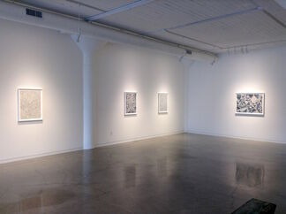 Andrea Way: A Delicate Crossing, installation view