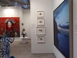 Nancy Hoffman Gallery at Art Miami 2015, installation view