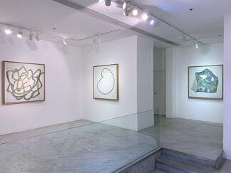 Wu Didi, installation view