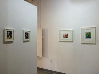 GARCÍA SINCLAIR + NAFIS WHITE: Mile High, Red Hot, installation view