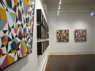 Jacob Leary: The Origins of Superfluous, installation view