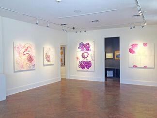 Shawn Hall, installation view
