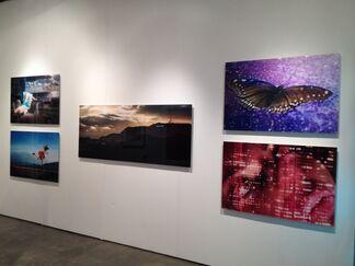 Contessa Gallery at Art Silicon Valley/San Francisco, installation view