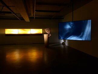 Ephemeral Scenes, installation view