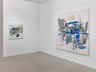 Carmen Neely   LIFELINES, installation view