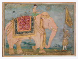 Marvellous Creatures: Animal Fables in Islamic Art, installation view