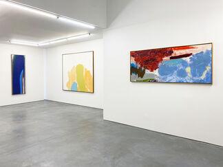 FRIEDEL DZUBAS | East Hampton, installation view