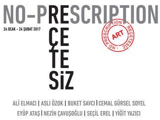 No-Prescription, installation view