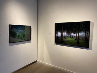 Ellie Davies ~ Stars, installation view
