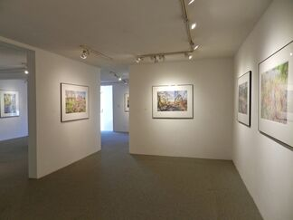 Luther Smith - Extraordinary / Ordinary, installation view