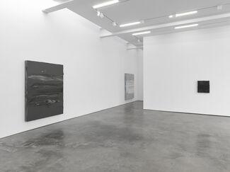 Jason Martin, installation view