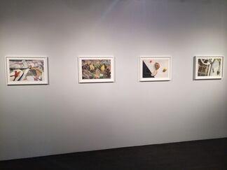 Jed Devine, installation view