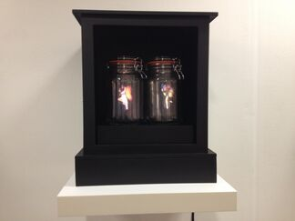 Muriel Guépin Gallery at London Art Fair 2013, installation view