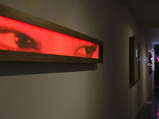 """""""The Cat That Eats Diodes"""" 吃二极管的猫, installation view"""