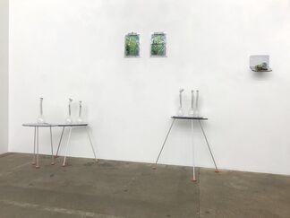 Lisa Kottkamp: Layered Operating System, installation view