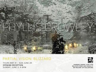 Partial vision: Blizzard, installation view