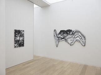 Jim Shaw, installation view