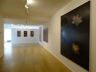 Ross Bleckner - Black Bird Brain, installation view