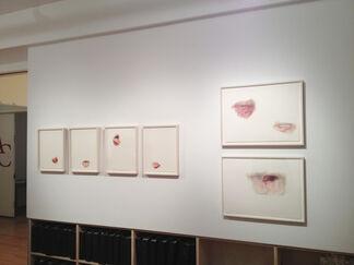 Julia Randall BLOWN, installation view