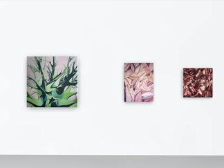 New Art from Geneva, installation view