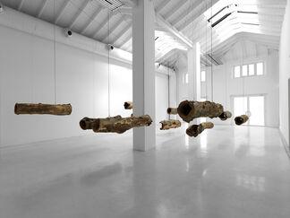 """Roberto Pugliese - """"Concerto per Natura Morta"""", installation view"""