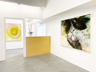 VIVIAN SPRINGFORD, installation view