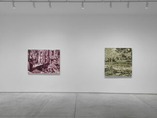 Jim Richard: I Know a Place, installation view