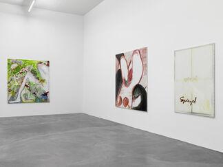 Tamuna Sirbiladze, Traces of Life, installation view