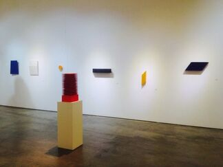 The Vibrant Field, installation view