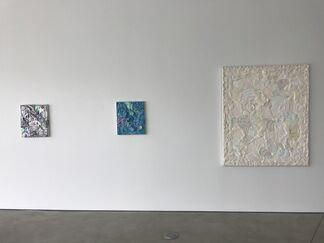 Detroit Red, installation view