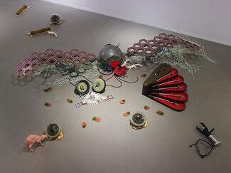 Eli Gur Arie:  Growth Engines, installation view
