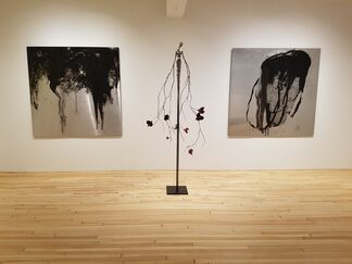 Qualia - Marie-Josée Roy, installation view