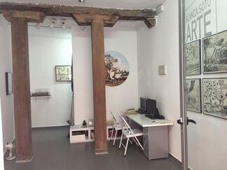 Seres Imaginarios, installation view