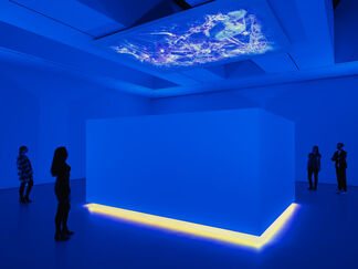 Diana Thater: Science, Fiction, installation view
