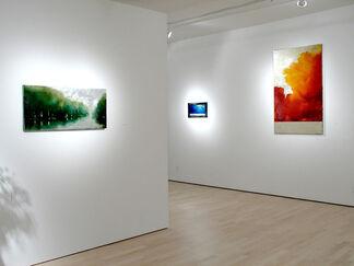 Richard Hambleton The Beautiful Paintings, installation view