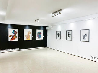 Ambiguous, installation view
