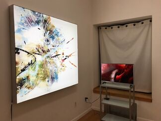 ARTSCIENCE, installation view