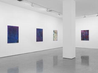 Tam Van Tran, Black Melong, installation view