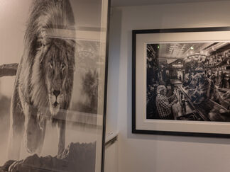 Gstaad Show, installation view