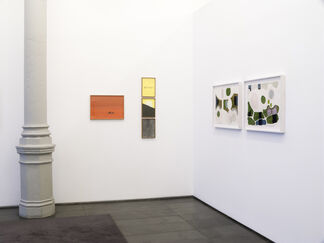 Showroom, installation view